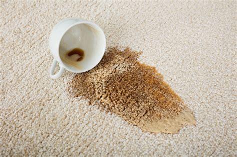 kaffeeflecken im teppich entfernen kaffeeflecken und teeflecken entfernen auf kleidung oder