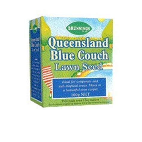 queensland blue couch seed queensland blue couch lawn seed 100 pure not a blend