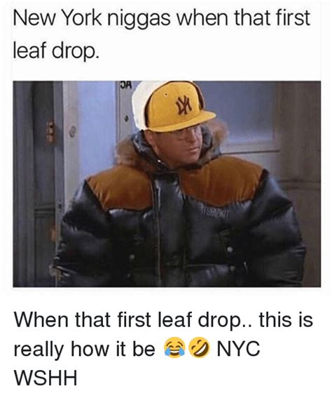 Meme New York - new york niggas when that first leaf drop when that first