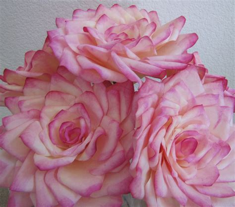 How To Make Realistic Paper Flowers - coffee filter roses welcome to my