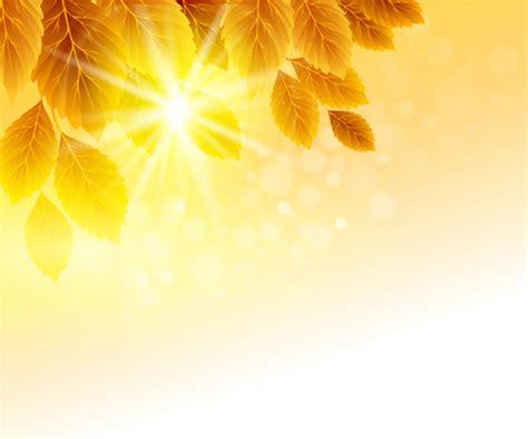 autumn golden yellow background vector