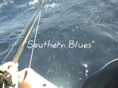 Blue Tld Piston Sticker S0014 Blue Tld Piston Sticker S001 southern blues fishing fishwrecked fishing wa fishing photos