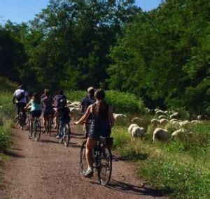 best tour companies in rome the best rome bike tours free tours by foot