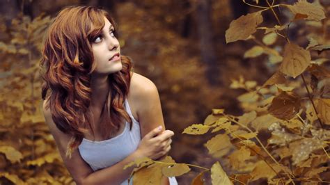 wallpaper girl in nature the woman is scared in the woods of autumn wallpapers and