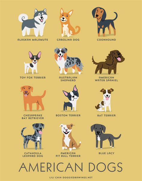 pets animals on pinterest dogs dog breeds and dog haircuts dogs of the world cute posters show the origins of 200