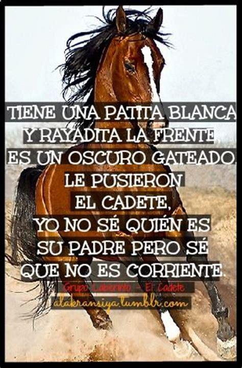 imagenes de vaqueras a caballo con frases montar a caballo frases buscar con google mexico