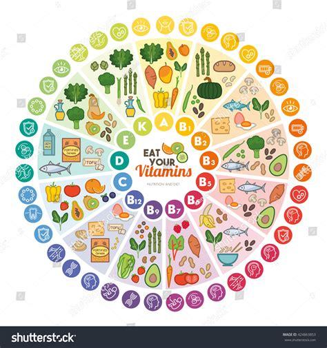 vegetables w vitamin d vitamin food sources functions rainbow wheel stock vector
