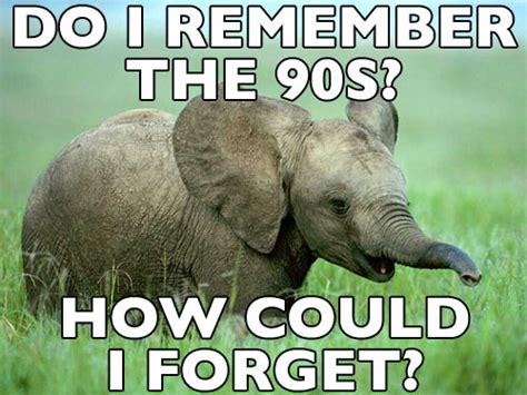 Baby Elephant Meme - funny elephant memes
