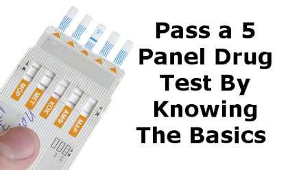 Chances Of Passing A Test With Detox by Easily Pass A 5 Panel Test By Knowing The Basics