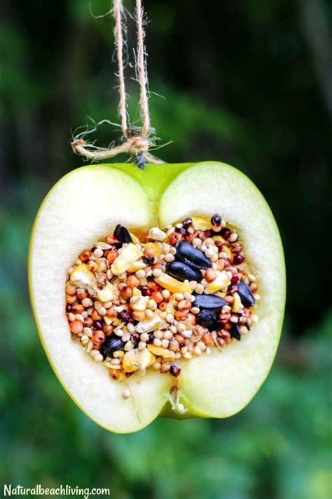 best bird feeders best 25 bird feeder craft ideas on