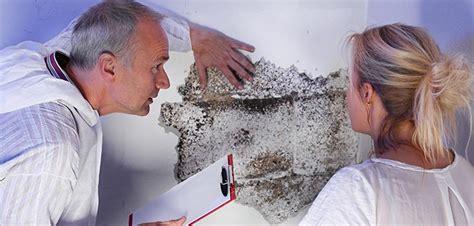 rivestimenti per pareti interne umide rivestire con pannelli le pareti umide
