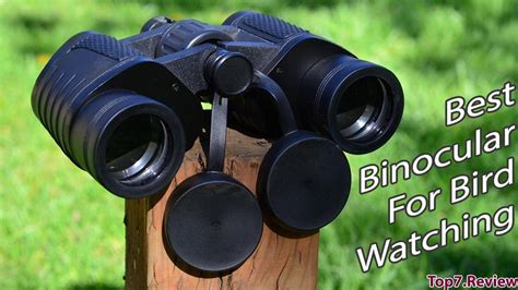best bird binoculars best bird binoculars driverlayer search engine