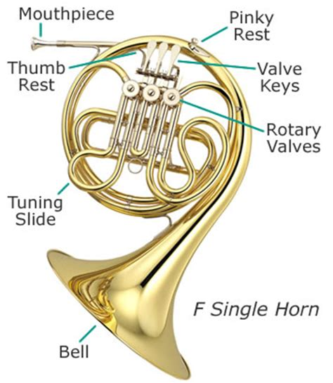 horn parts diagram how to care for your musical instrument