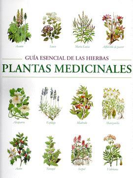 imagenes de flores medicinales plantas medicinales libreras picasso