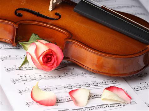 imagenes instrumentos musicales violin fondos de pantalla instrumento musical viol 237 n descargar