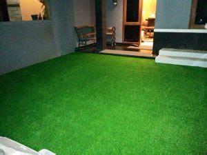 Karpet Bulu Sintetis Ruang Rusa rumput sintesis dekorasi alami indoor