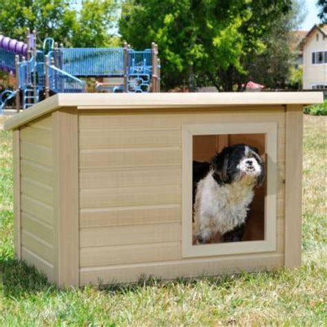 eco dog house 1000 images about fun dog houses on pinterest