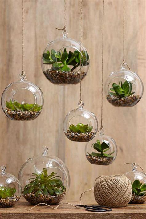 amazing terrarium decor ideas   indoor garden