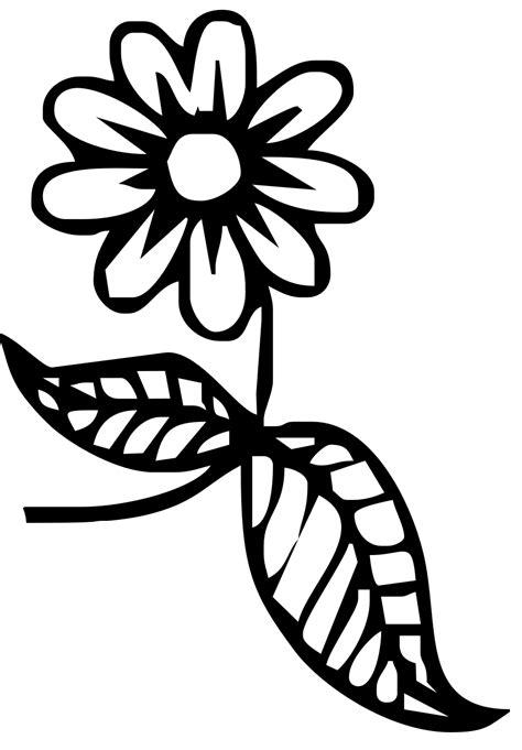 fiore disegni disegni maestra