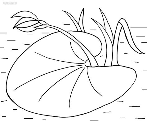 printable lily pad coloring pages  kids coolbkids