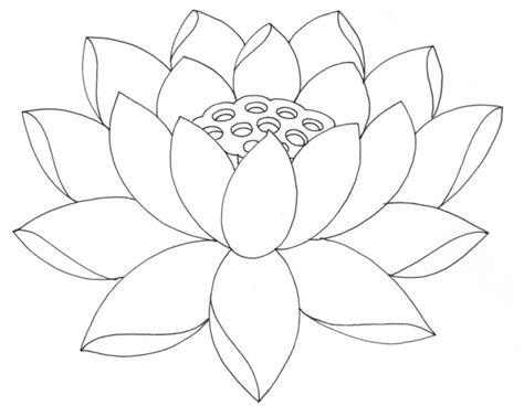 simple flower outline coloring home
