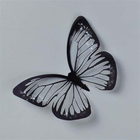 gambar kupu kupu warna hitam putih ide perpaduan warna