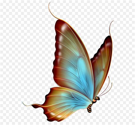 clipart png butterfly clip brown and blue transparent butterfly