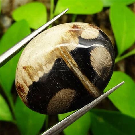 Batu Mustika Fosil Kayu mustika fosil kayu purba pusaka dunia