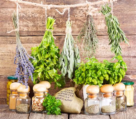 our kosher kitchen benefits of fruits veggies herbs and spices chart the benefits of using fresh herbs healthy living