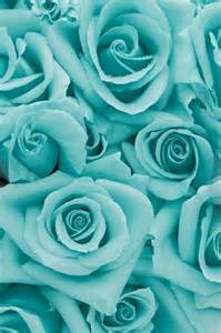 teal colored flowers 25 best ideas about blue background on