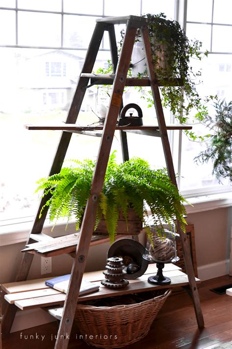 Ladder Shelf For Plants junk 201 diy rustic shelving ideasfunky junk interiors