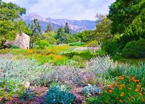 the meadow santa barbara botanical gardens