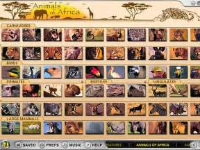 Play animals of africa full review download free demo screenshots