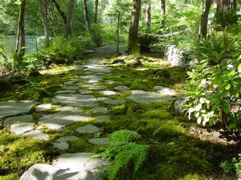 17 best images about moss paint on pinterest gardens