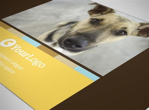 shelter template card animal shelter pet adoption postcard template