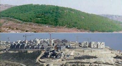Frame Kacamata 2804 Abu Murmer nahida displaced palestinians page 25