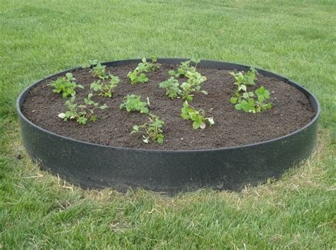 raised strawberry bed raised strawberry bed in the gaah den pinterest