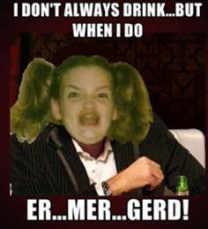 Er Mer Gerd Meme - er mer gerd on pinterest splash mountain baskets and memes