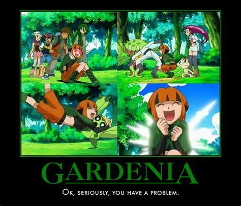 Gardenia Vine Whip Gardenia As Images Images