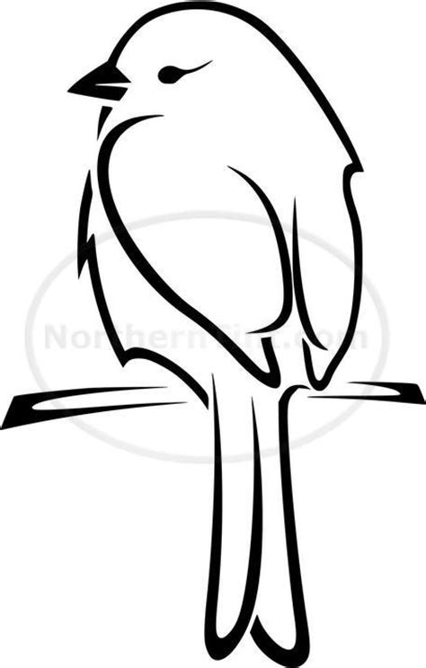 248 Best Birds Drawing How Ideas Images On Pinterest Easy Tattoos To Draw 3