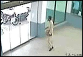 cat runs into door 24 epic walking through the glass door fail gifs the