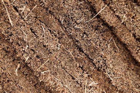 teppich als trittschalldämmung seegras als d 228 mmstoff 187 eigenschaften vor nachteile