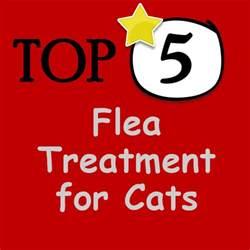 best flea treatment for home best flea treatment for cats