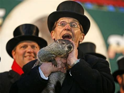 groundhog day usa today more winter groundhog punxsutawney phil sees shadow