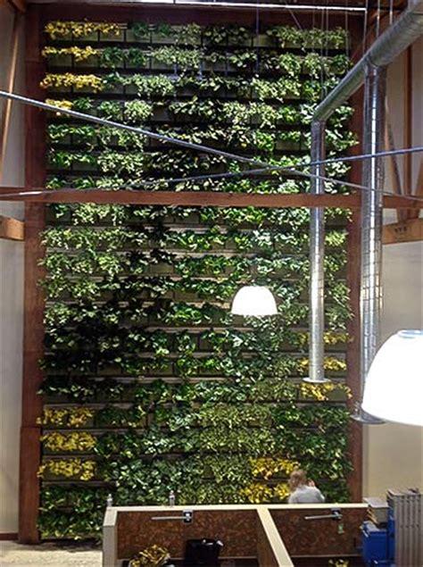 Living Wall Indoor Indoor Wall Plant Greenery Handing Plant Wall