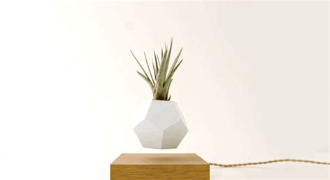Pot Pohon Melayang Levitating Floating Plant these floating pots let your house plants levitate and spin 171 twistedsifter