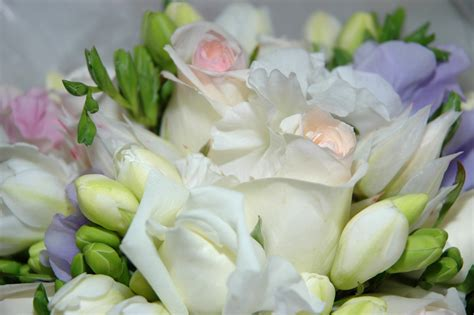 Cheap Florist by Finding Fresh Flower Deals Flower Pressflower Press
