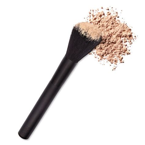 7 Makeup Tools You Must To Do Your Makeup Like A Pro by Blend Like A Pro The Makeup Brushes You Need Right Now
