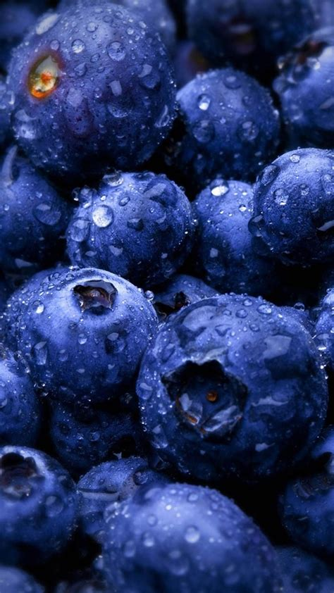 blueberry wallpaper hd blueberries fruit water drops android wallpaper blue