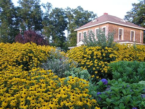 shorecrest bed and breakfast shorecrest bed and breakfast last minute summer rentals and mid week bandb